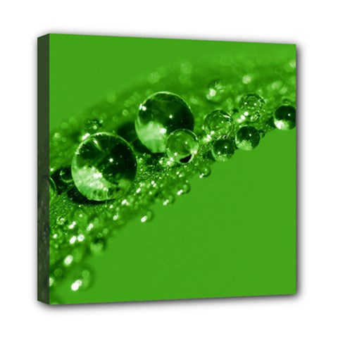 Green Drops Mini Canvas 8  x 8  (Framed)