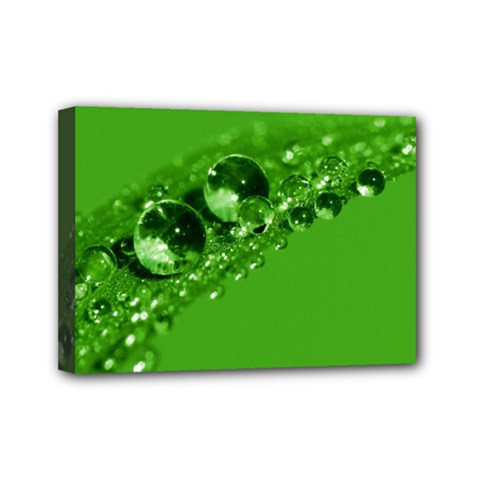Green Drops Mini Canvas 7  x 5  (Framed)
