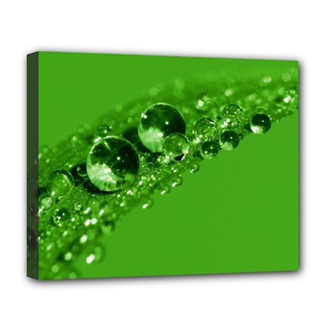 Green Drops Deluxe Canvas 20  X 16  (framed)