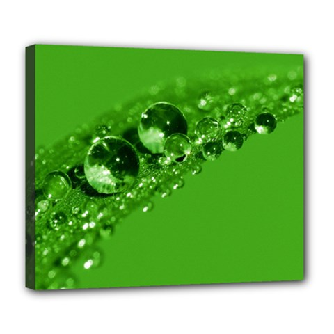 Green Drops Deluxe Canvas 24  x 20  (Framed)