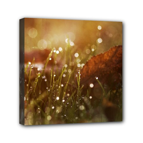Waterdrops Mini Canvas 6  X 6  (framed)