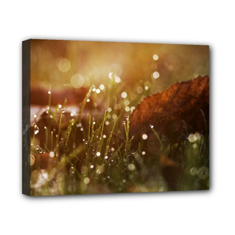 Waterdrops Canvas 10  x 8  (Framed)