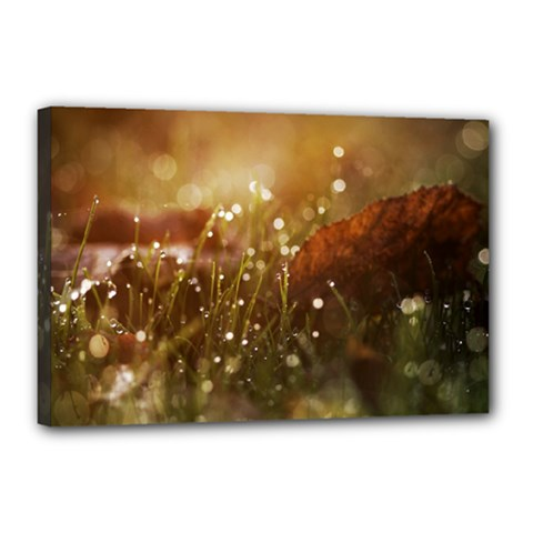 Waterdrops Canvas 18  x 12  (Framed)