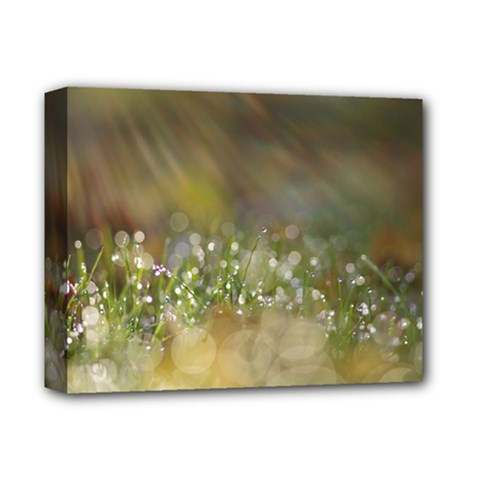 Sundrops Deluxe Canvas 14  X 11  (framed)