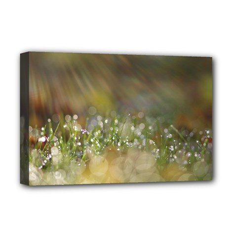 Sundrops Deluxe Canvas 18  x 12  (Framed)