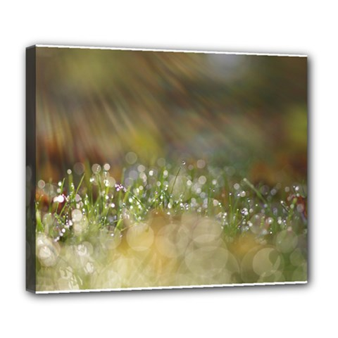 Sundrops Deluxe Canvas 24  X 20  (framed)