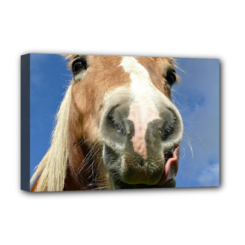Haflinger  Deluxe Canvas 18  x 12  (Framed)
