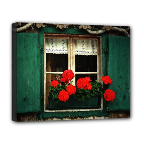 Window Deluxe Canvas 20  X 16  (framed)