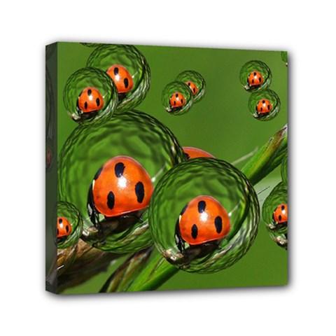 Ladybird Mini Canvas 6  X 6  (framed)