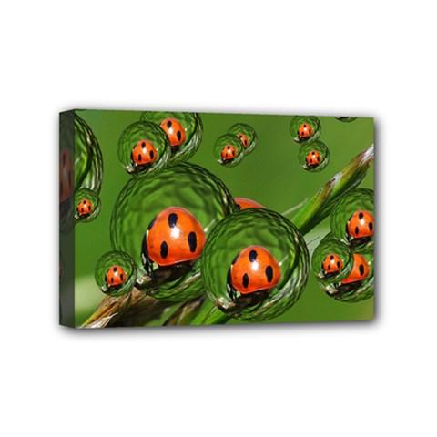 Ladybird Mini Canvas 6  x 4  (Framed)