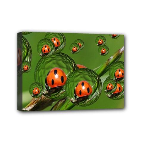 Ladybird Mini Canvas 7  x 5  (Framed)