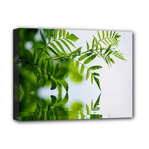 Leafs With Waterreflection Deluxe Canvas 16  x 12  (Framed)