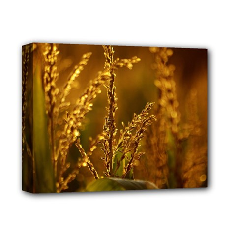 Field Deluxe Canvas 14  X 11  (framed)