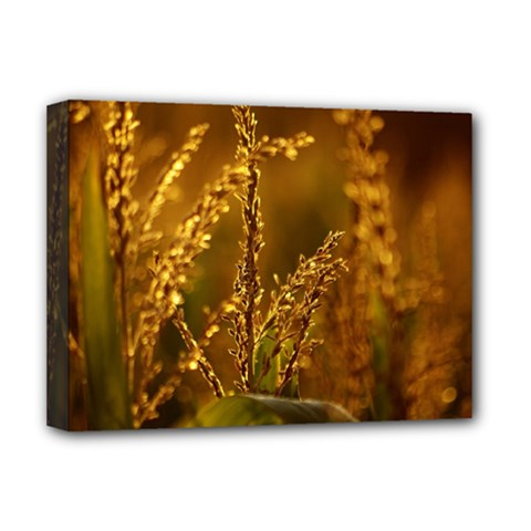 Field Deluxe Canvas 16  X 12  (framed)