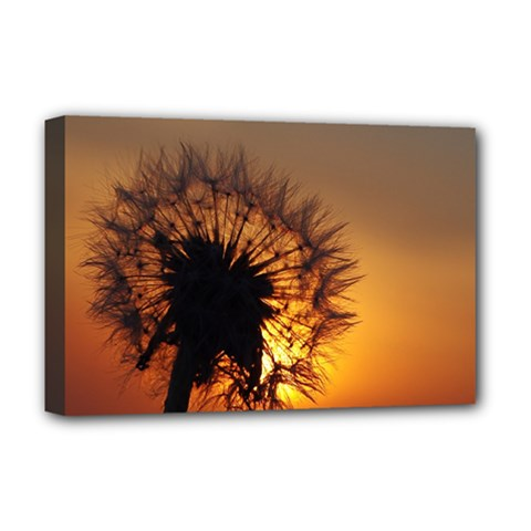 Dandelion Deluxe Canvas 18  x 12  (Framed)