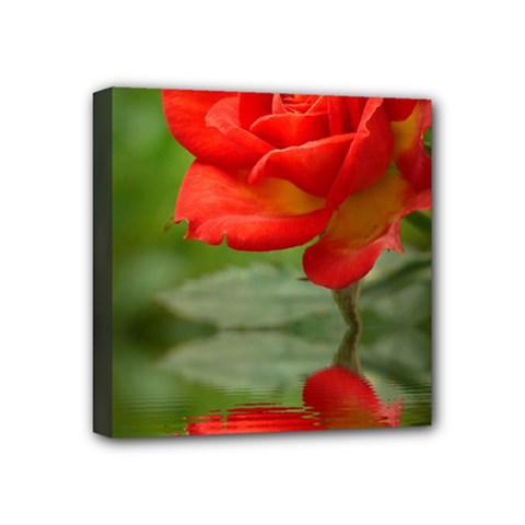 Rose Mini Canvas 4  x 4  (Framed)