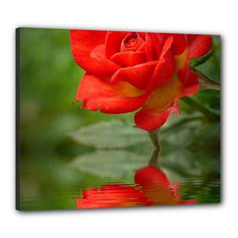 Rose Canvas 24  x 20  (Framed)
