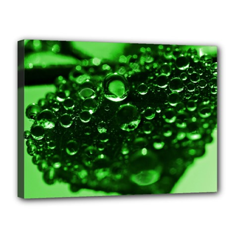 Waterdrops Canvas 16  X 12  (framed)