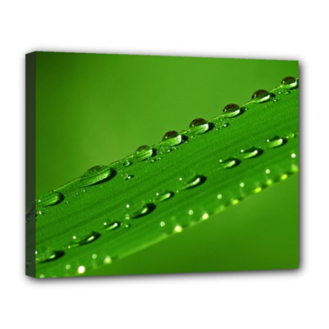 Waterdrops Canvas 14  X 11  (framed)
