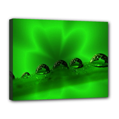 Drops Canvas 14  x 11  (Framed)
