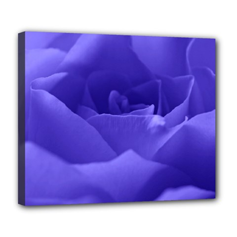 Rose Deluxe Canvas 24  x 20  (Framed)