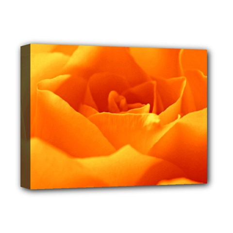 Rose Deluxe Canvas 16  x 12  (Framed)