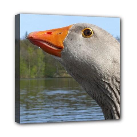 Geese Mini Canvas 8  x 8  (Framed)
