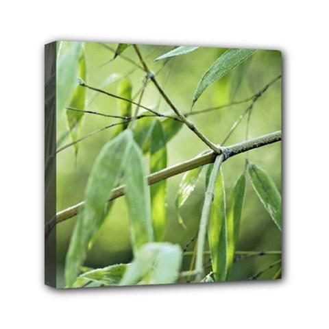 Bamboo Mini Canvas 6  X 6  (framed)