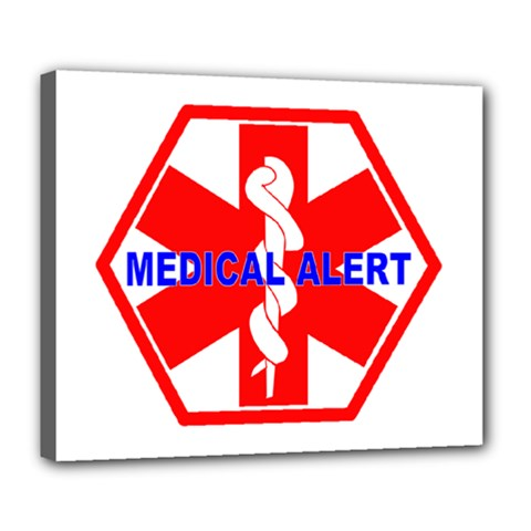 Medical Alert Health Identification Sign Deluxe Canvas 24  X 20  (framed)
