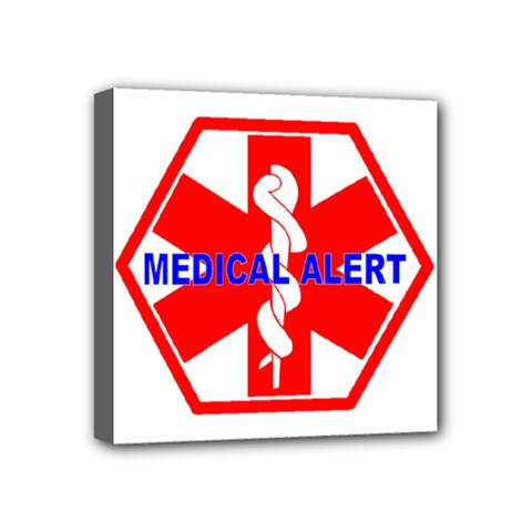 MEDICAL ALERT HEALTH IDENTIFICATION SIGN Mini Canvas 4  x 4  (Framed)