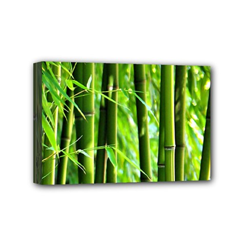 Bamboo Mini Canvas 6  x 4  (Framed)
