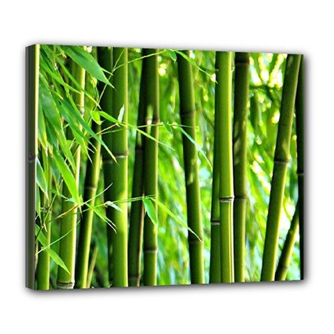 Bamboo Deluxe Canvas 24  x 20  (Framed)