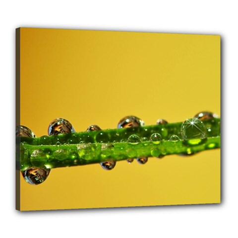 Drops Canvas 24  x 20  (Framed)