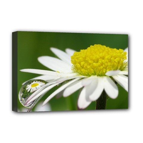 Daisy With Drops Deluxe Canvas 18  X 12  (framed)