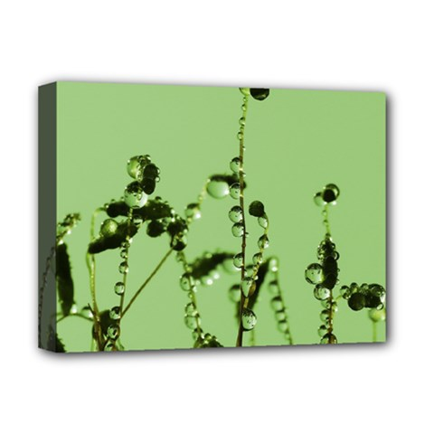Mint Drops  Deluxe Canvas 16  x 12  (Framed)