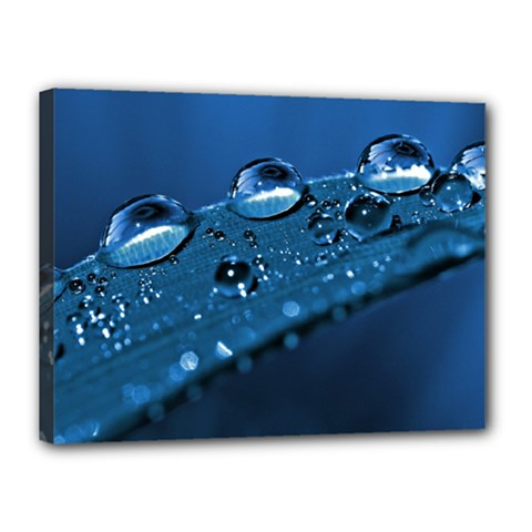 Drops Canvas 16  X 12  (framed)