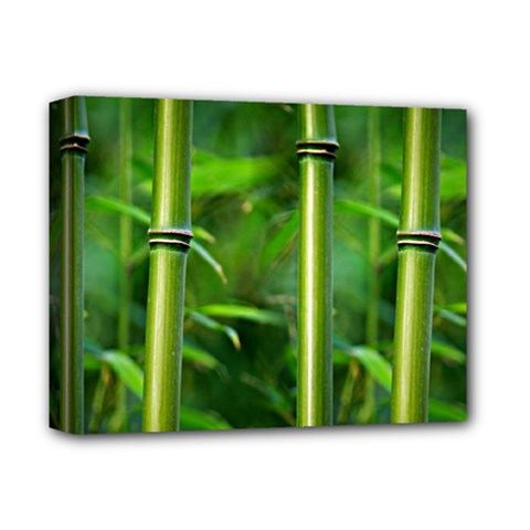Bamboo Deluxe Canvas 14  X 11  (framed)