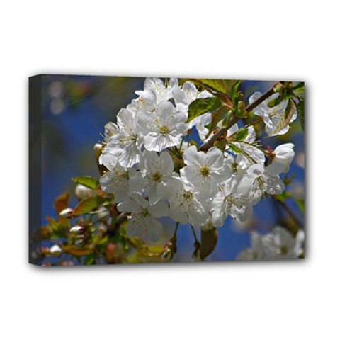 Cherry Blossom Deluxe Canvas 18  x 12  (Framed)