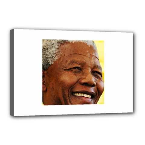 Mandela Canvas 18  x 12  (Framed)