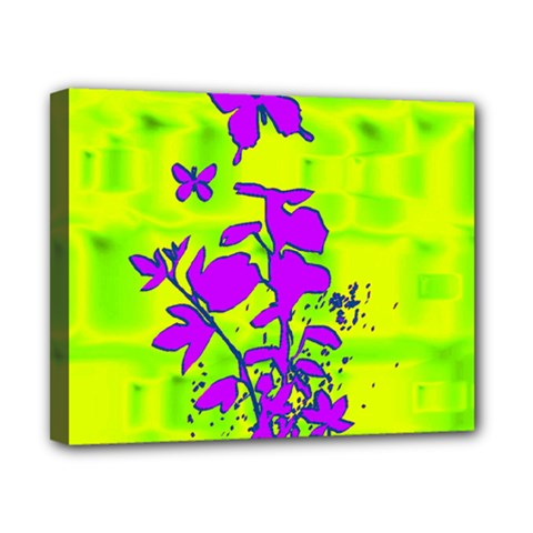 Butterfly Green Canvas 10  x 8  (Framed)