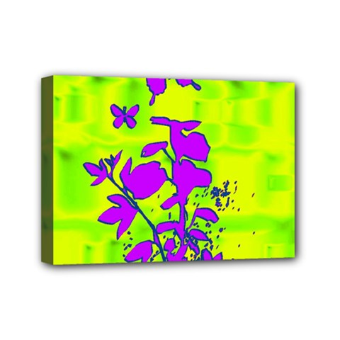 Butterfly Green Mini Canvas 7  x 5  (Framed)