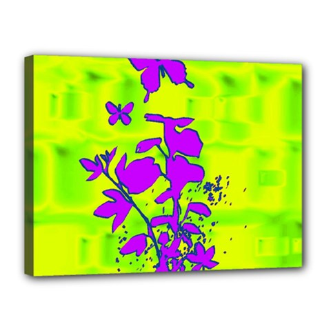 Butterfly Green Canvas 16  x 12  (Framed)
