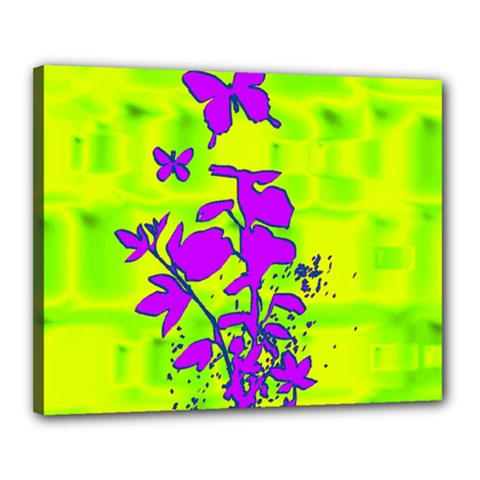 Butterfly Green Canvas 20  X 16  (framed)