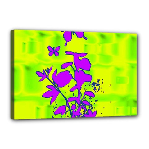 Butterfly Green Canvas 18  x 12  (Framed)