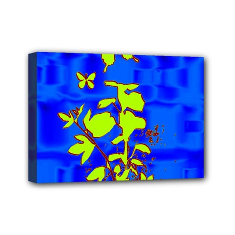 Butterfly blue/green Mini Canvas 7  x 5  (Framed)