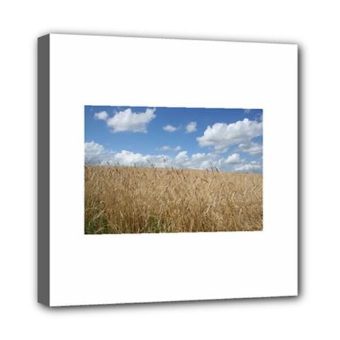 Gettysburg 1 068 Mini Canvas 8  x 8  (Framed)