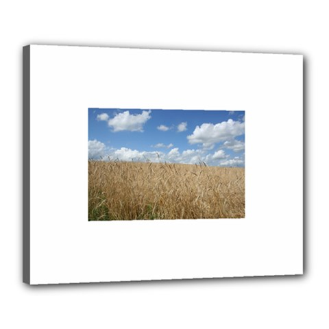 Grain and Sky Canvas 20  x 16  (Framed)