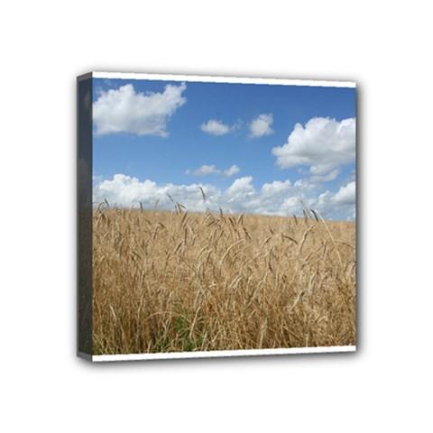 Grain and Sky Mini Canvas 4  x 4  (Framed)