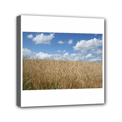 Grain And Sky Mini Canvas 6  X 6  (framed)