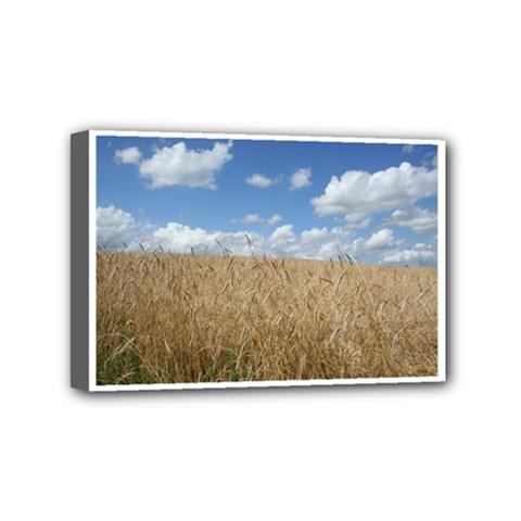 Grain And Sky Mini Canvas 6  X 4  (framed)
